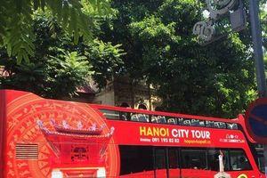 Xe buýt 2 tầng mở thêm tuyến: Sở nói cần, chuyên gia khẳng định không khả thi