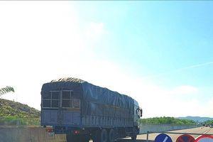 Thanh tra đột xuất dự án cao tốc Đà Nẵng - Quảng Ngãi