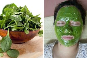 Tổng hợp những phương pháp dưỡng da bằng mặt nạ rau mồng tơi