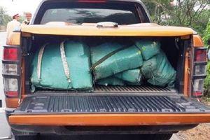 Bắt hơn 300 kg ma túy đá trong cốp xe bán tải