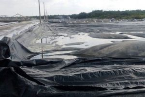 TP HCM: Chính quyền và người dân 'bất đồng' quan điểm về mùi hôi thối từ Bãi rác Đa Phước