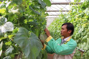 Tiềm năng phát triển nông nghiệp 4.0