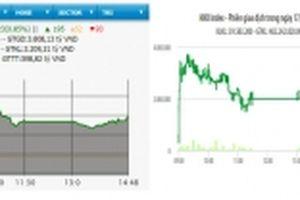 Cổ phiếu dầu khí nổi sóng, VN-Index tăng hơn tám điểm