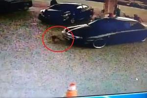 Bé gái 2 tuổi bị ô tô đâm, kéo lê tại trạm xăng