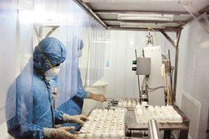 Điều chế thành công vắc xin cúm mùa và cúm A/H5N1: Việt Nam sẵn sàng ứng phó với đại dịch