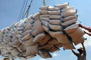 Doanh nghiệp nhập khẩu lúa mì lao đao vì một văn bản trái luật, lạm quyền