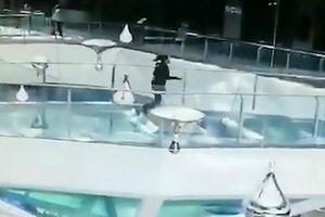 Kinh hoàng khoảnh khắc nhân viên vấp ngã, rơi xuống bể cá mập