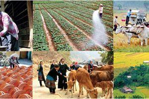 Việt Nam đạt nhiều tiến bộ về phát triển con người và giảm nghèo đa chiều