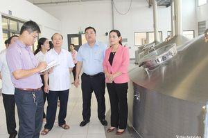 HĐND tỉnh giám sát công tác bảo vệ môi trường tại 2 nhà máy ở Hưng Nguyên