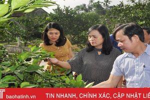 Nhiều xã ở Hương Khê còn gặp khó khăn trong xây dựng nông thôn mới