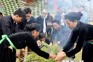Náo nức Lễ hội giã cốm đón Trăng của người Tày Tuyên Quang
