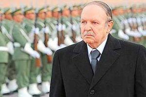 5 tướng lĩnh Algeria nhận án tù vì tham nhũng