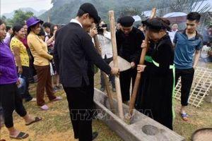 Đặc sắc lễ hội giã cốm của người Tày Tuyên Quang