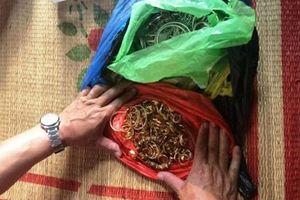 Ninh Bình: Bắt giữ nhóm đối tượng trộm cắp 200 cây vàng