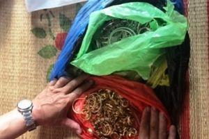 Bắt nhóm đối tượng trộm cắp 200 cây vàng tại Ninh Bình