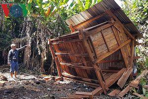 Khi 2 xã mãi giành quyền quản lý đất, gỗ cứ lần lượt bỏ rừng ra đi