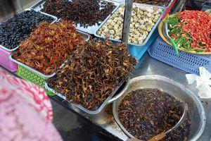 Khám phá đặc sản côn trùng chiên giòn của Campuchia