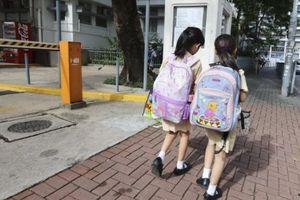 Học sinh lớp 1 Trung Quốc phải đo chu vi của lá, viết 12 trang báo cáo