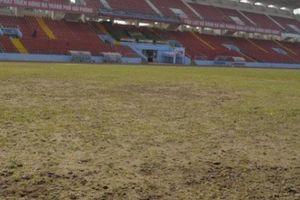 Đã đến lúc V.League mơ về những mặt sân... như Ngoại hạng Anh!