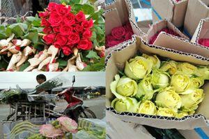 Sát ngày 20/10, dân buôn ở 'thủ phủ hoa' lớn nhất miền Bắc cũng 'sốt sình sịch' vì hoa hồng Đà Lạt tăng giá gấp đôi