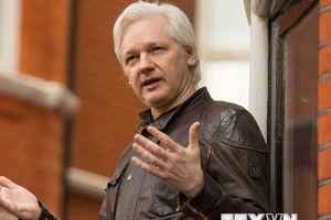 Ecuador bác thông tin thảo luận với LHQ về người sáng lập WikiLeaks