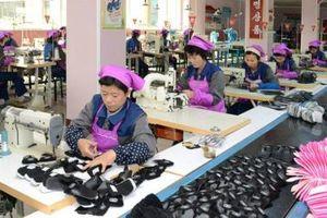 Hàn Quốc: Năng suất lao động của doanh nghiệp nhỏ và vừa thấp nhất OECD