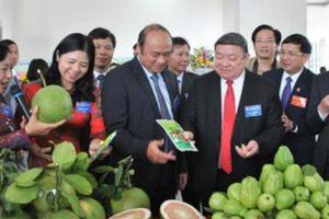 Đại hội Hội ND Bắc Giang: Hỗ trợ sản xuất, tiêu thụ nông sản cho ND