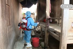 Tây Giang nỗ lực dập dịch sốt xuất huyết