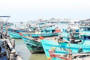 Cà Mau: Nạo vét cửa biển nửa chừng, tàu cá công suất lớn 'mắc cạn'