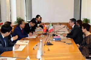 Phó Thủ tướng Thường trực Chính phủ Trương Hòa Bình gặp Lãnh đạo Hội đồng Tư pháp quốc gia Italy