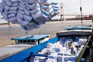 Gần 9 tháng, kim ngạch xuất khẩu gạo đạt 2,38 tỷ USD
