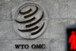 Nhiều nước đòi WTO điều tra thuế suất kim loại của Mỹ