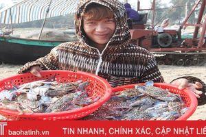Ngư dân Xuân Yên 'kiếm' tiền triệu mỗi ngày từ khai thác ghẹ