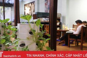 Độc đáo cà phê… rau sạch giữa lòng thành phố Hà Tĩnh
