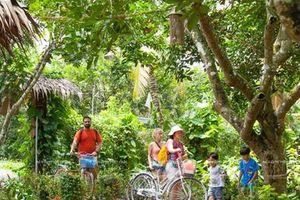 Phát triển du lịch Đồng bằng sông Cửu Long: Nhiều tín hiệu tích cực
