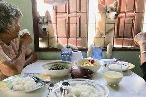 Đang ăn trưa ngon lành, 2 'con ngáo' xuất hiện ăn xin khiến 2 bà cụ giật mình
