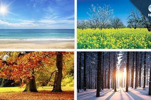 Tháng sinh ảnh hưởng đến tính cách của bạn như thế nào?