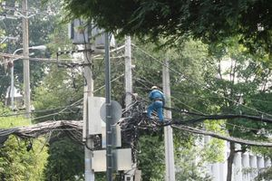Thành phố Hồ Chí Minh: Đảm bảo cung cấp điện an toàn trong mùa mưa bão