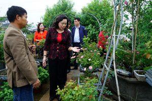 Mê Linh tập trung phát triển các mô hình sản xuất nông nghiệp tập trung, quy mô lớn