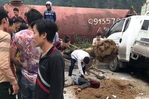 Tai nạn liên hoàn, một công nhân trồng cây xanh ven đường tử vong
