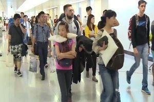 Tiếp tục cấp thị thực điện tử cho người nước ngoài