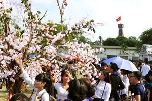 Cột cờ Hà Nội – biểu tượng kiêu hãnh của Thủ đô
