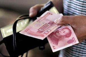 Giá NDT giảm sâu: Trung Quốc có dính đòn mã hồi thương?