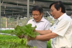Quảng Trị phấn đấu có hơn 50% số xã đạt chuẩn nông thôn mới vào năm 2020