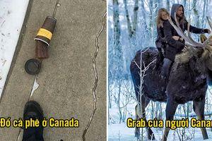 16 lý do vì sao cả thế giới yêu Canada, đất nước của những sự kỳ quặc dễ thương