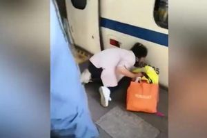 Mẹ mải mê dùng điện thoại, con gái rơi xuống gầm tàu cao tốc