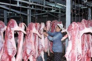 Tiêu chuẩn quốc gia về thịt lợn mát phải rõ nguồn gốc