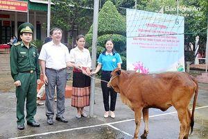 BẢN TIN THANH NIÊN: Thu gom vỏ lon bia gây quỹ mua bò giống