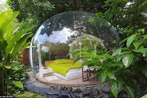 Khách sạn bong bóng độc nhất vô nhị trên hòn đảo Caribbean xa xôi
