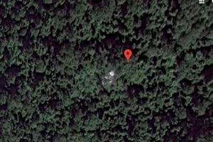 Xuất hiện hình ảnh nghi là mũi và đuôi máy bay MH-370 trong rừng rậm Campuchia